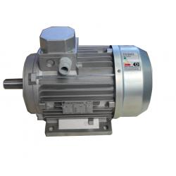 MOT VEMAT TRIF. 0.7HP (0.55 KW) 4/6 POLOS VTB