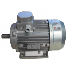 MOT VEMAT TRIF. 20 HP (15 KW) 2/4 POLOS VTB